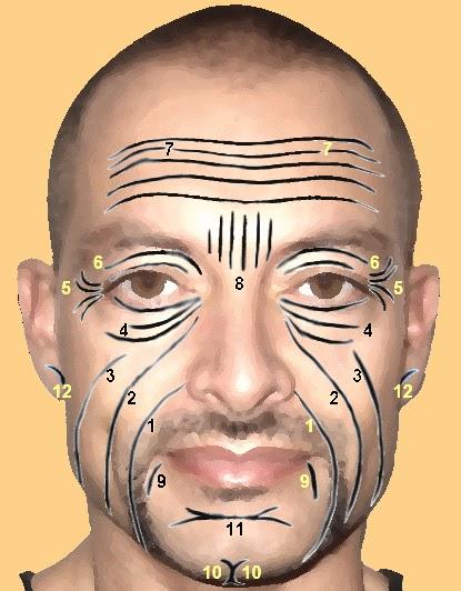 La máscara para la persona con el huevo y la miel el aceite