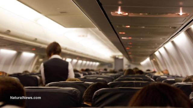 Airplane-Cabin-Flight-Attendant-Stewardess