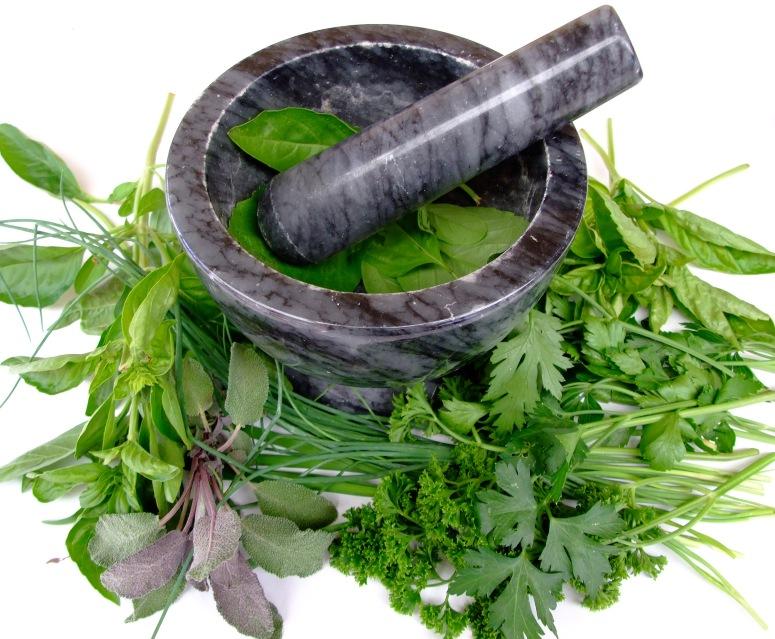 230 plantas medicinales | Medicina natural & Bioenergética