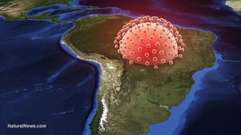 Zika-Virus-South-America